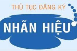 Tư vấn, đăng ký bảo hộ Thương hiệu/Nhãn hiệu tại Việt Nam