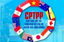 Câu chuyện Sở hữu trí tuệ: Giải pháp giúp các doanh nghiệp bảo vệ nhãn hiệu trong Hiệp định CPTPP