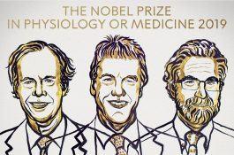 Nobel Y học 2019: hiểu được tại sao người trên vùng cao vẫn sống bình thường dù thiếu oxy
