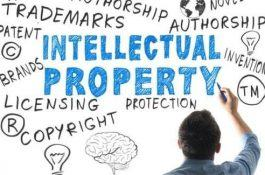 The Draft on Intellectual Property Law will be announced amending and supplementing a number of articles of the Intellectual Property Law